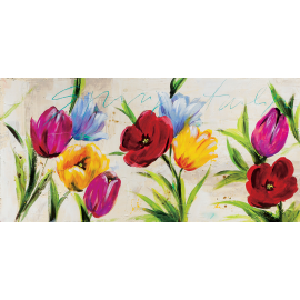 Tulipani multicolors