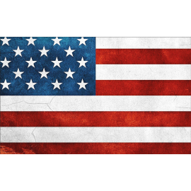 Svuotatasche bandiera americana