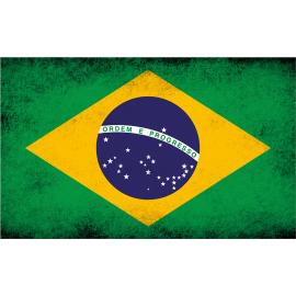 Svuotatasche bandiera brasiliana