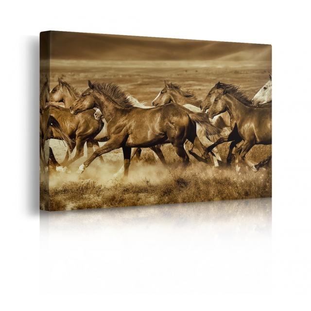 quadro cavalli prospettiva