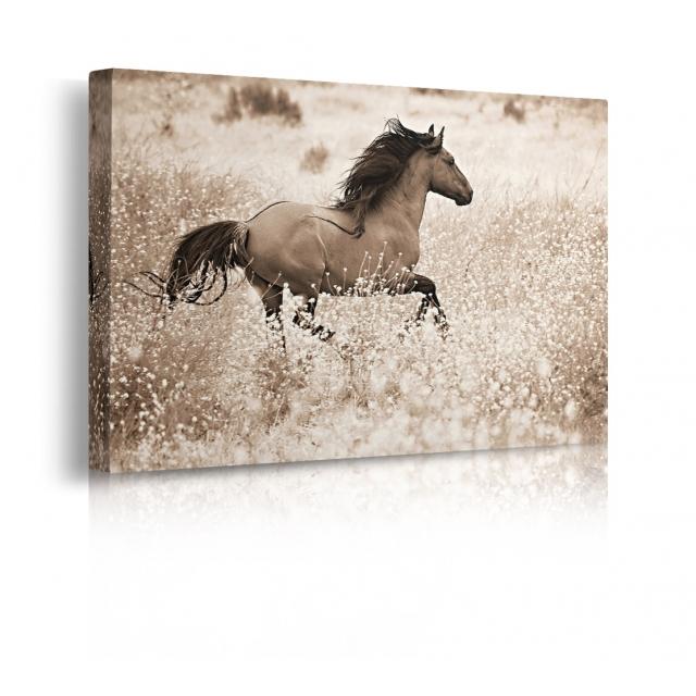 Quadro con cavallo in corsa prospettiva