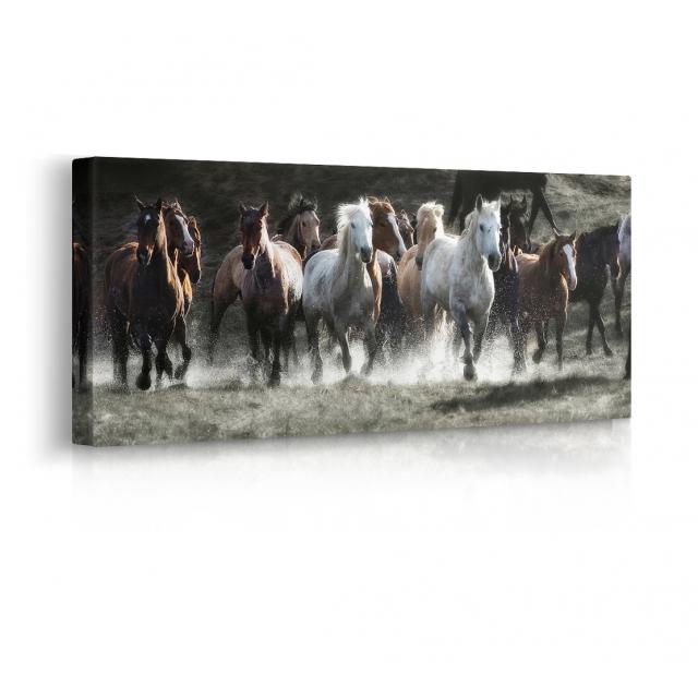 Quadro con cavalli prospettiva