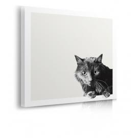 Quadro con gatto nero prospettiva