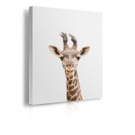 Quadro con testa di giraffa prospettiva