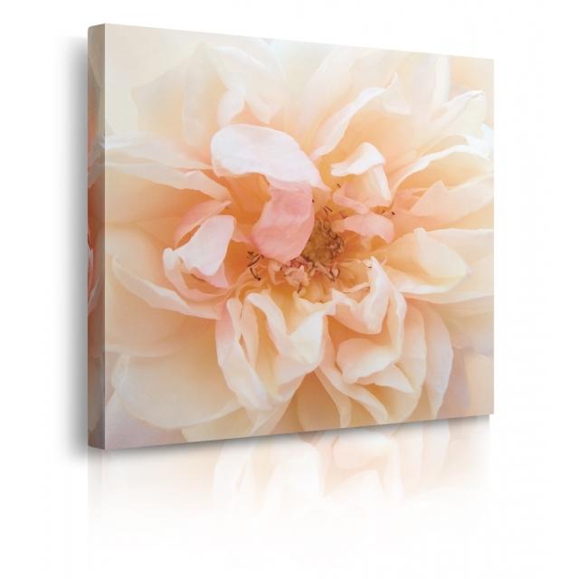 Quadro con fiori rosa prospettiva