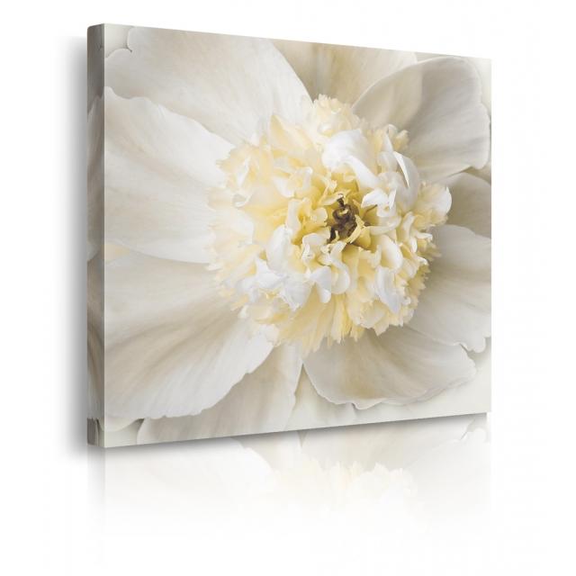 Quadro con fiori bianchi prospettiva