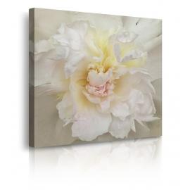 Quadro moderno con fiori bianchi prospettiva
