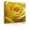 Quadro con rose gialle prospettiva