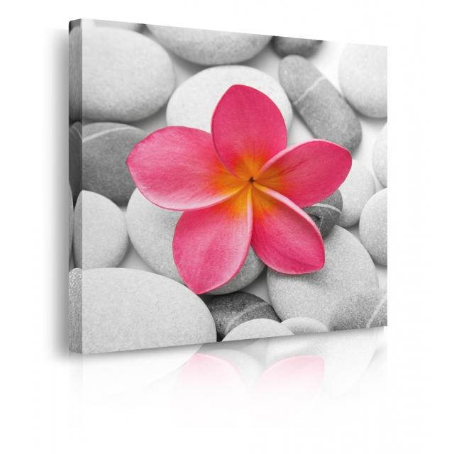 Quadro fiore rosa prospettiva