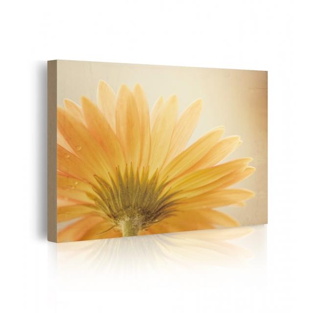 quadro fiori gialli prospettiva