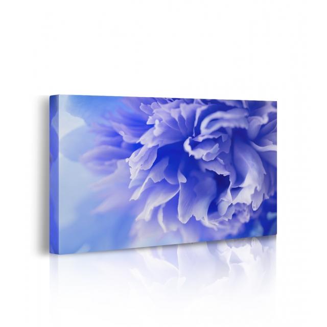 Quadro stampato su tela fiori prospettiva