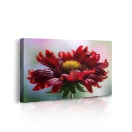 Quadro fiori rossi prospettiva