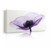 Quadro con fiori viola prospettiva