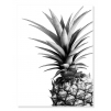 Quadro ananas