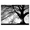 Quadro albero bianco e nero