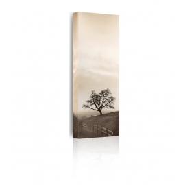 Quadro Sentinel Oak Tree prospettiva