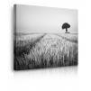 Quadri in bianco e nero paesaggi prospettiva