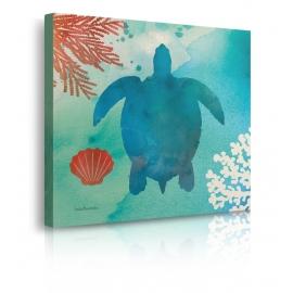 quadro mare tartaruga prospettiva