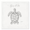 quadro tartaruga marina