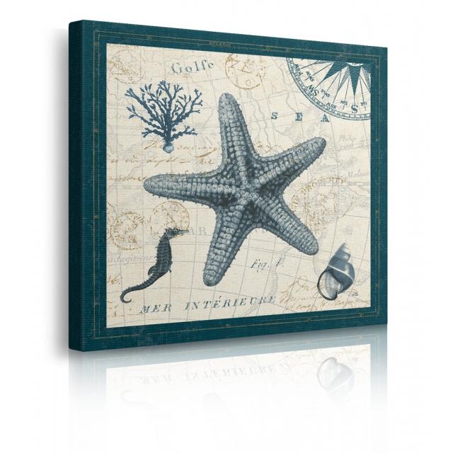 quadro stella marina prospettiva