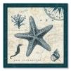 quadro stella marina