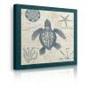 quadro tartaruga ambientazione