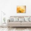 quadro fiori gialli ambientazione