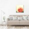 quadro fiori rosa ambientazione