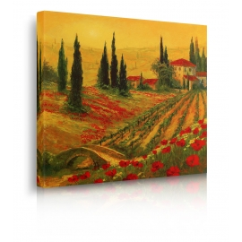 Quadro Poppies of Toscano I