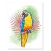 Quadro pappagallo