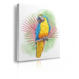 Quadro pappagallo prospettiva