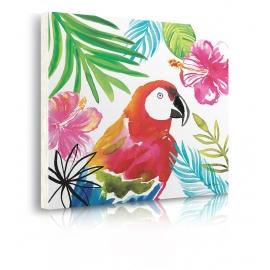 Quadro pappagallo colorato prospettiva