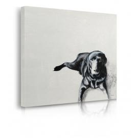 Quadro cane nero per terra prospettiva