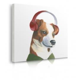 Quadro cane ascolta la musica prospettiva