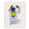 Quadro cane con pallina da tennis in bocca