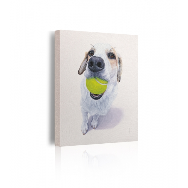 Quadro cane con pallina da tennis in bocca prospettiva