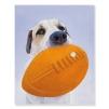 Quadro cane con pallone ovale