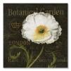Quadro fiore bianco