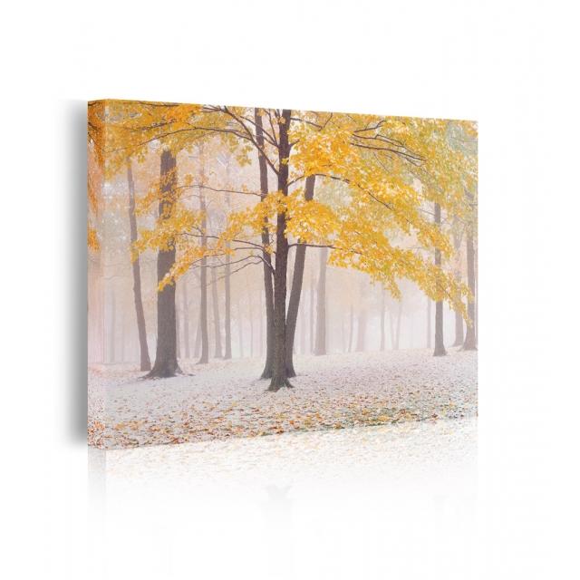Quadro neve autunno prospettiva