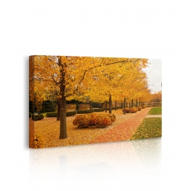 Quadro paesaggio con passerella d'autunno prospettiva