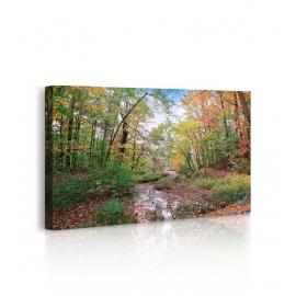Quadro Autumn at Hopkins Pond