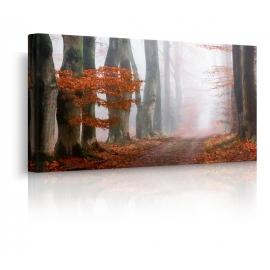 Quadro paesaggio autunno nebbioso prospettiva